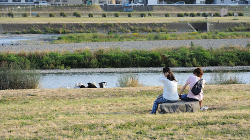 バツイチ婚活 東広島市