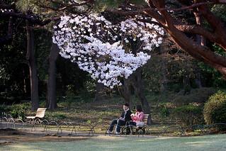 バツイチ婚活 刈谷市