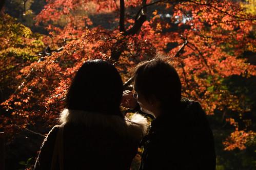 バツイチ婚活 熊本市